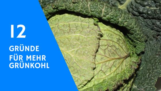 12 Gründe warum du Grünkohl essen solltest